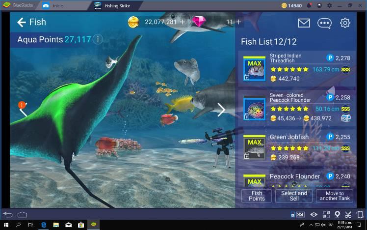 My Aquarium Currently #2 - Fishing Strike Official Community